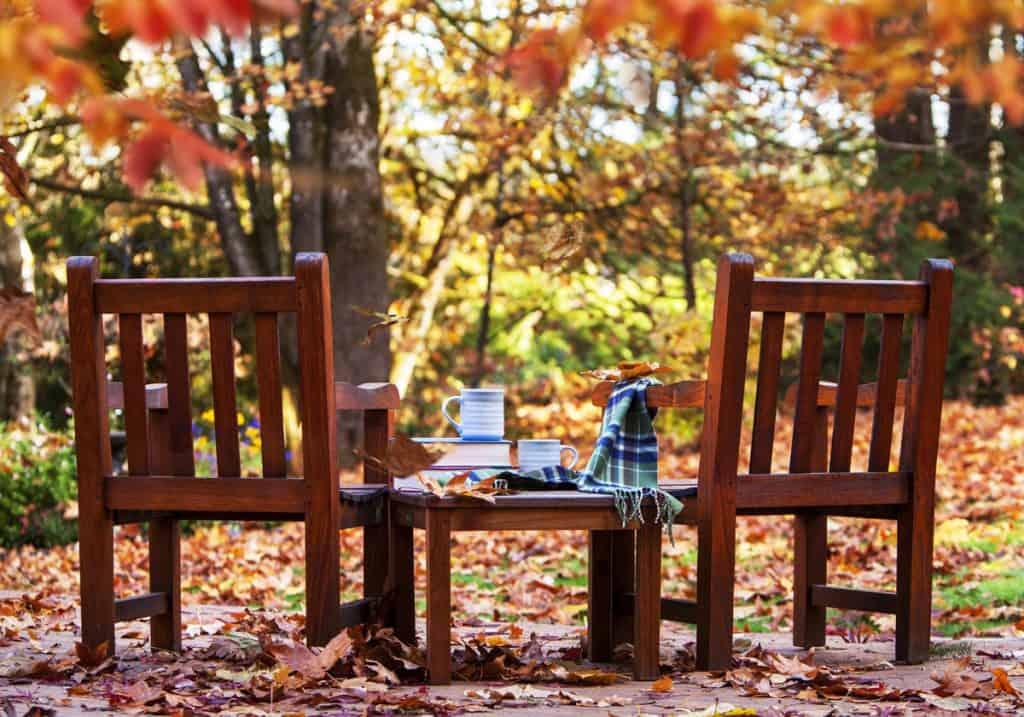 buy grill during fall season