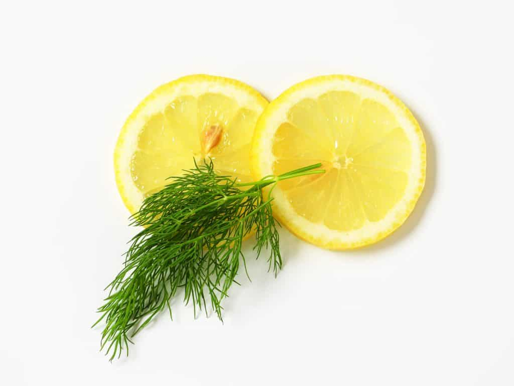 fresh dill and lemon