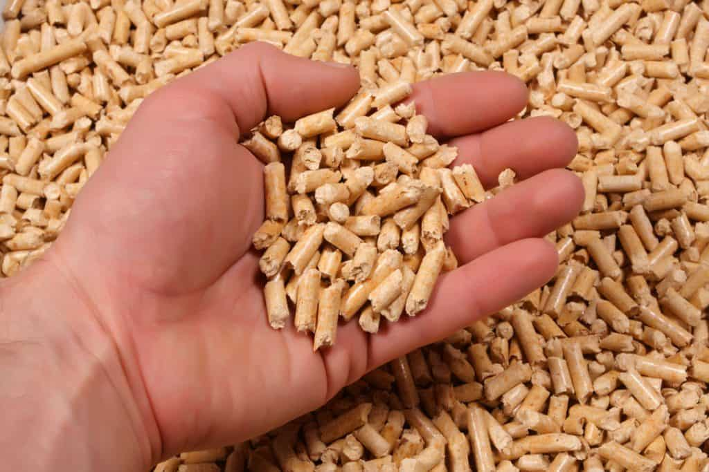 pellets in hand